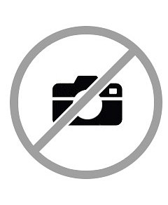 Baumr-AG 20 Easy Start 62cc Petrol Chainsaw SX62 w/ Sharpener
